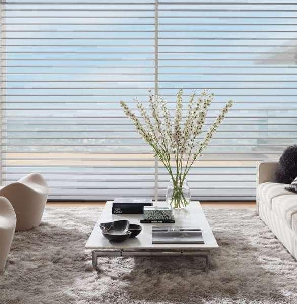 window-sheers-silhouette